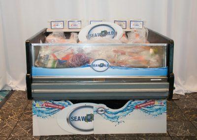Frozen Food Display