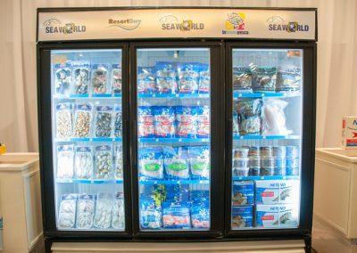 Three Door Freezer Display